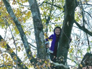 A boy of perhaps 12 years looks down to the photographer, laughing from a tree between autumn-colored leaves.