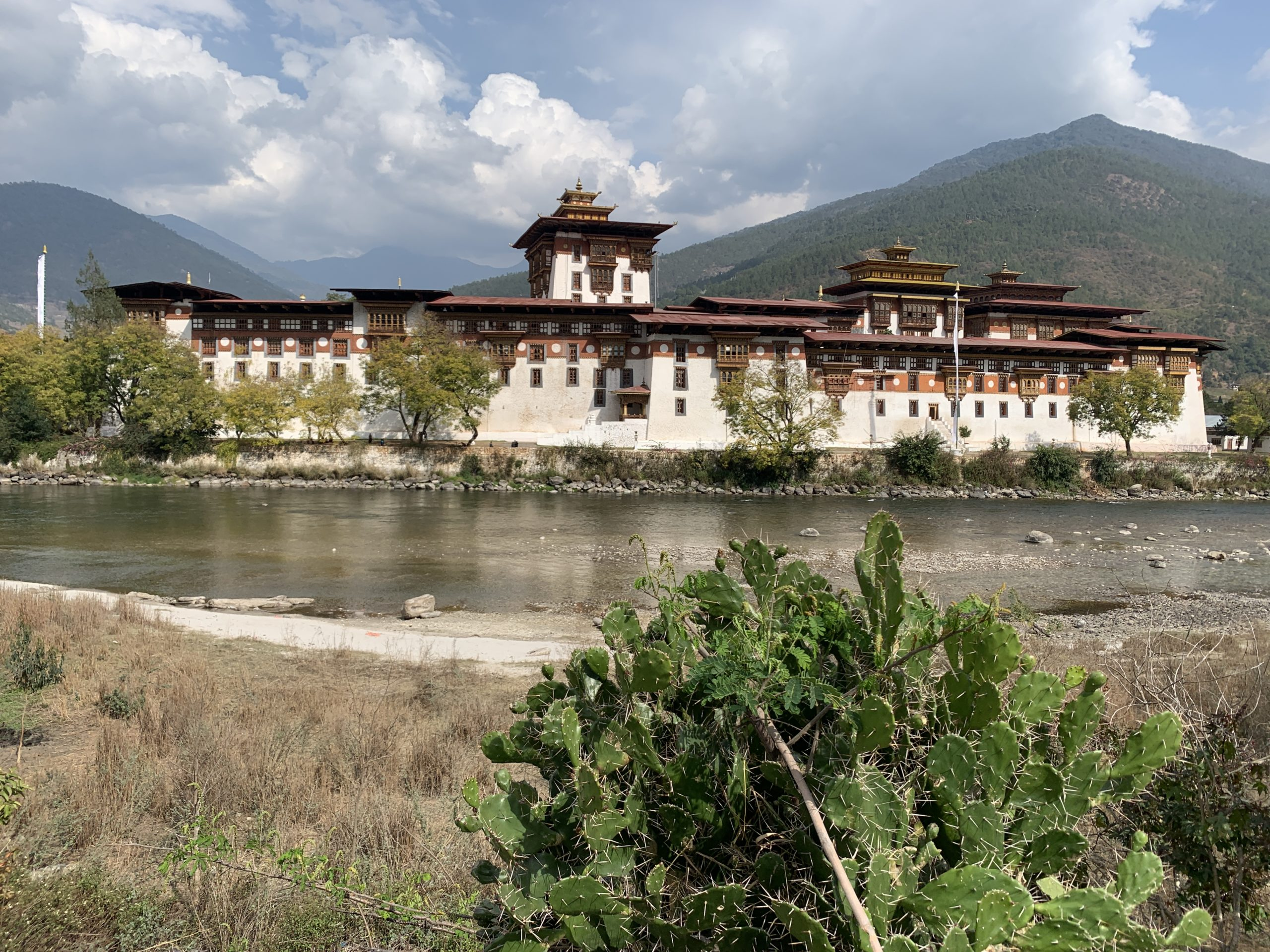 View of the castle of Punakha, named the Dzong